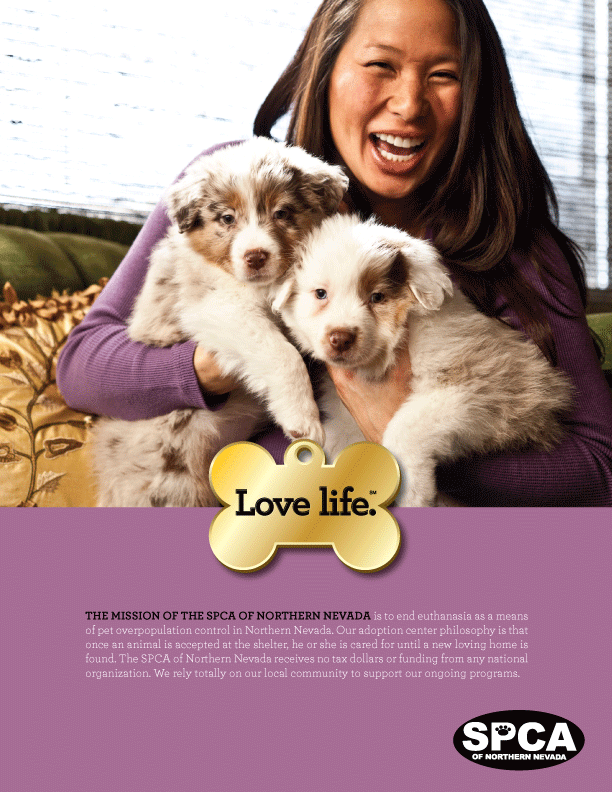 Mission Poster for SPCA by Stan Can Design